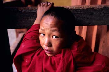 <b>Bhutan, Wangdiphodrang</b>, A young monk looking at the camera